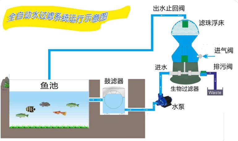 鱼池过滤器的工作原理:由鱼池底最深处引接水管至鼓滤器,经鱼池水泵
