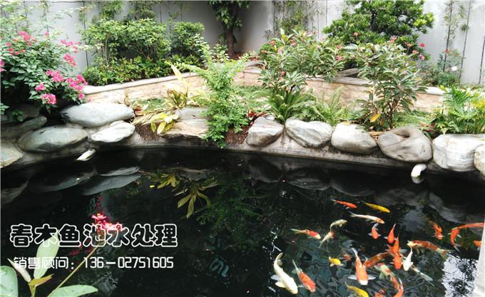 别墅庭院鱼池设计案例