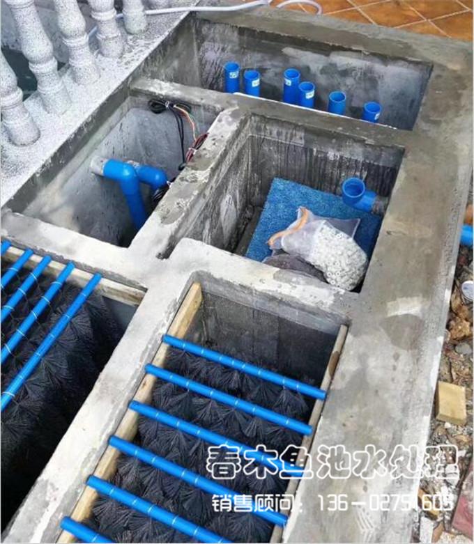 锦鲤鱼池过滤 庭院鱼池设计 西普鱼池过滤器